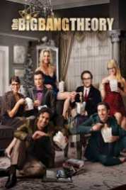The Big Bang Theory s09e15