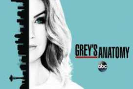 Greys Anatomy season 13 episode 17