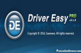 Driver Easy 5